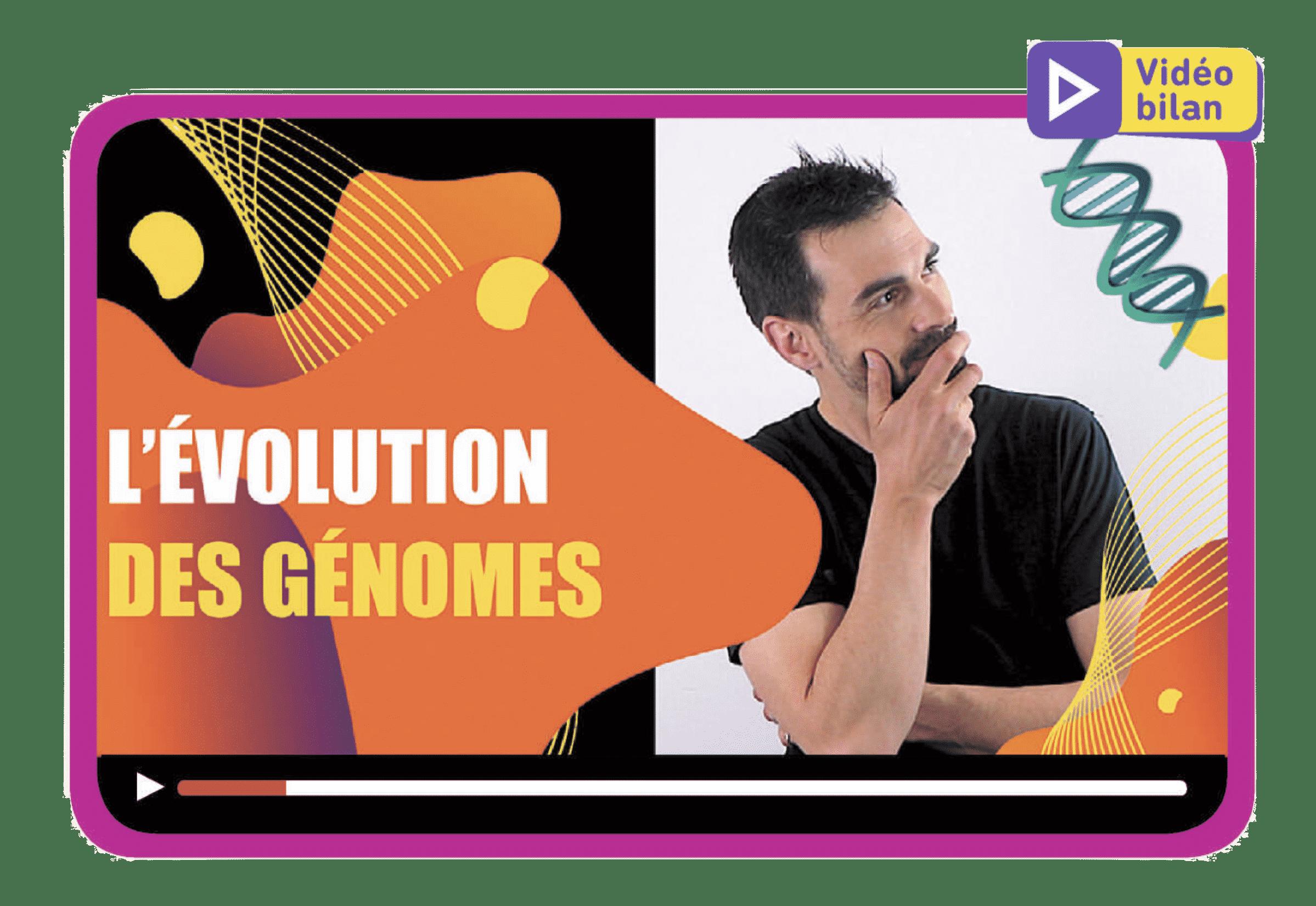 Conséquences génétiques de la reproduction sexuée